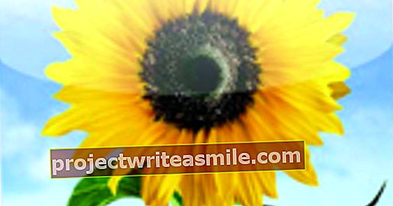 Ručné: Automaticky synchronizuje fotografie s funkciou Photo Stream